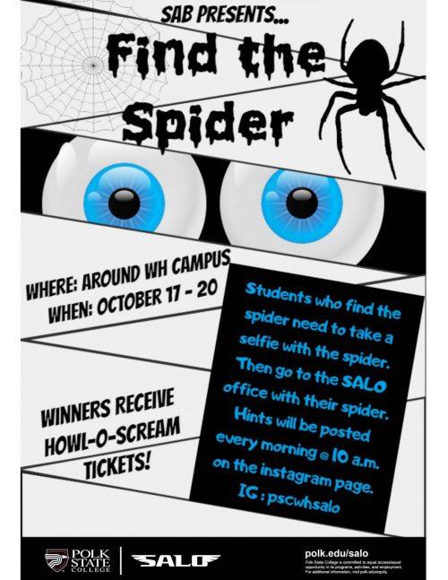 find-the-spider-flyer