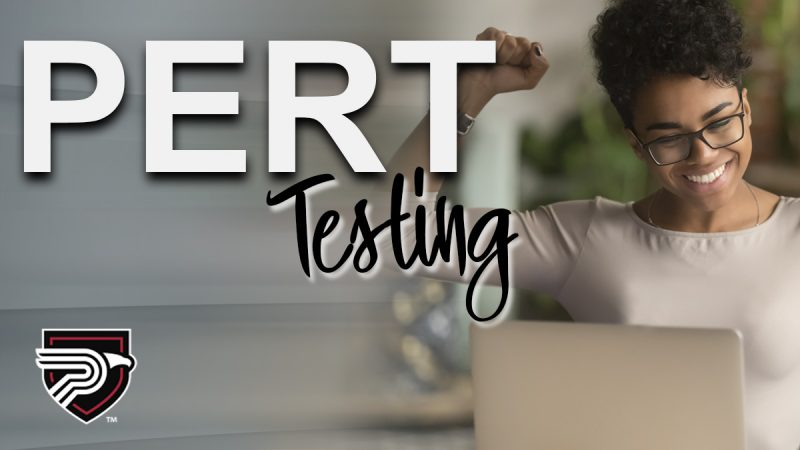 PERT Test image woman and computer