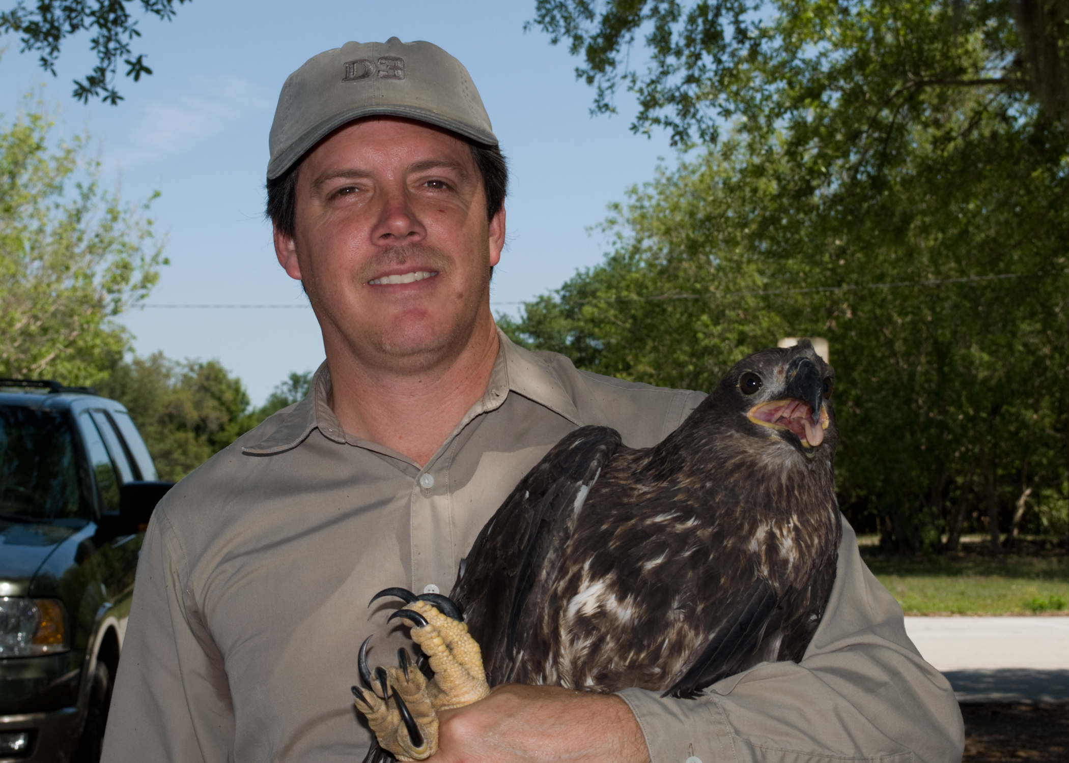 Lake Region Audubon Society President Reiner Munguia holds an eagle who was rescued from a nest at Willowbrook Golf Course in Winter Haven with the help of an EagleWatch volunteer. The bird was diagnosed with Avian Pox, a viral infection. After two months of treatment, the eagle was released in early June, becoming the 450th eagle returned the wild from the Audubon Center for Birds of Prey.