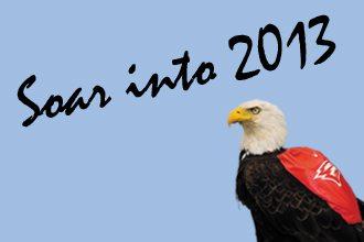 soar into 2013
